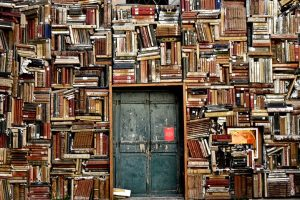 A wall fool of books with a green door in the middle