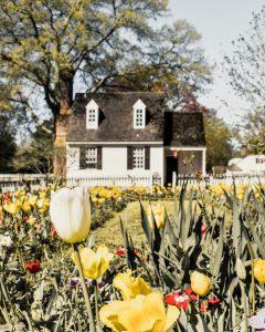 a white house with a garden