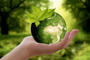a green globe with a leaf