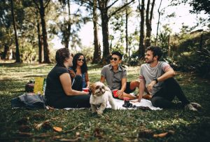 Organizing an event is a great way of making friends with your new neighbors